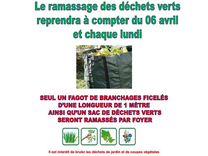 ramassage déchets verts2