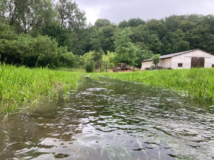 l'été sous la pluie7