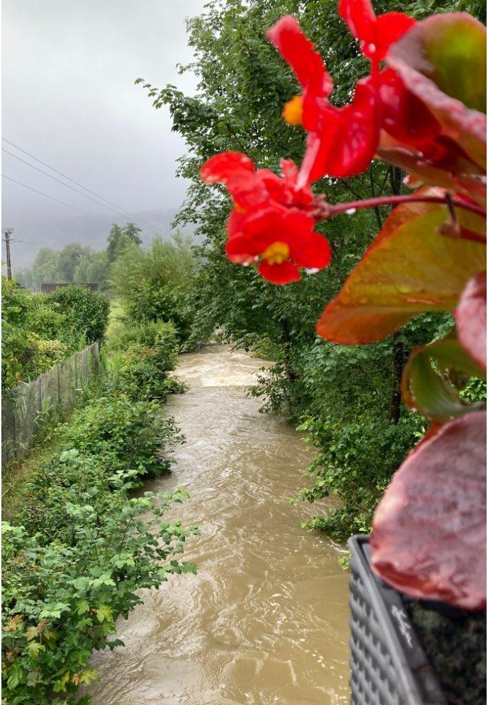 l'été sous la pluie16